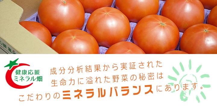 会津薬師トマトへ